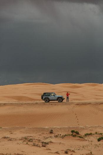 Horse cart on desert against sky