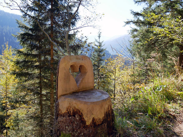 Alm Alpbach Alpen Alps Austria Beauty In Nature Berge Countryside Day Gipfel Herbst Hütte Mountain Nature Non-urban Scene Outdoors Remote Scenics Solitude Tirol  Tranquil Scene Tranquility Wald Wandern Wiese