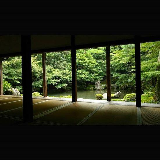 2015.9.26 蓮華寺 緑が落ち着いてきたかなぁ。 写真見てる人には 「ここ3ヶ月くらい同じ写真、使いまわしてんじゃないの?」 って言われそうですけど笑 月一蓮華寺 蓮華寺 京都 Kyoto Japan Team_jp_ Japan Instagood 景色 Scenery 自然 Nature Icu_japan Ig_japan Ig_nihon Jp_gallery Japan_focus Temple