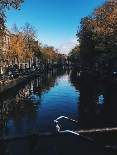 Tree Architecture Water Built Structure Reflection Building Exterior Outdoors Day Travel Destinations Nature Autumn Sky No People City Amsterdam Grachten VSCO Backgrounds