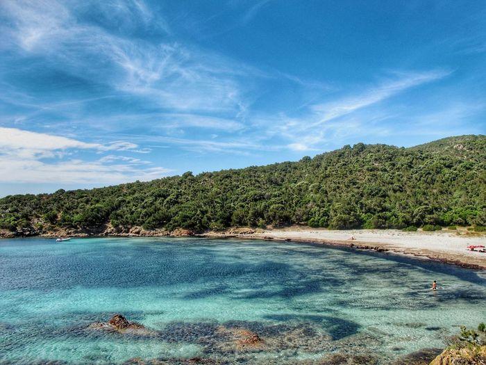 Punta Chiappa EyeEmNewHere Corse France Clouds No Words Beach Sea Transparent Water Amazing View Tree Blue Pinaceae Pine Tree Sky Cloud - Sky Sand The Traveler - 2018 EyeEm Awards