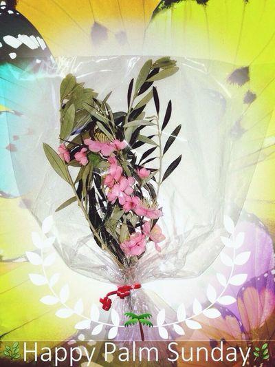 Happy Palm Sunday to All 🌿 🌿 🌿 Feliz Domingo De Ramos a Todos 🌿 🌿 Buona Domenica Delle Palme a Tutti  🌿 🙏🏼 🌿