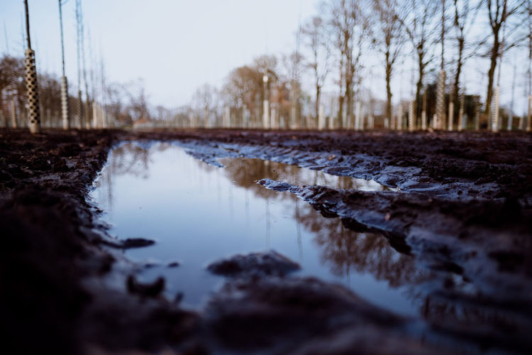 IN THE FIELDS (muddy ways) Water Nature Sky No People Tree Tranquility Reflection Plant Day Selective Focus Bare Tree Lake Scenics - Nature Tranquil Scene Outdoors Non-urban Scene Land Rock Beauty In Nature Surface Level Fujifilm