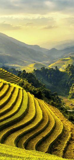 Mountain Landscape Scenics - Nature Agriculture Growth Rural Scene Field