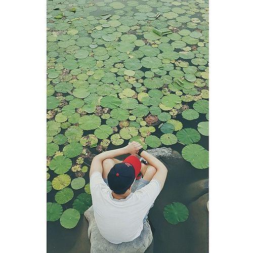 中国 山东 淄博 张店 公园 chinaonelove lovechina China Shandong Zibo park me takeapic photooftheday vscocam vsco photogrid instagood happy summer missinghome amazing plants mlb loveit nature