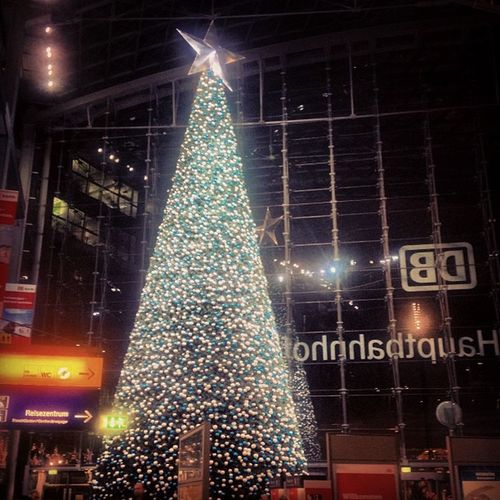 #berlin #christmastree #germany #instagood #photooftheday #iphoneonly Instagood Berlin Germany Iphoneonly Photooftheday Christmastree