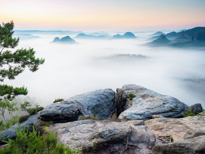 Kleiner winterberg beautiful morning view over edge into deep valley in saxon switzerland, germany.