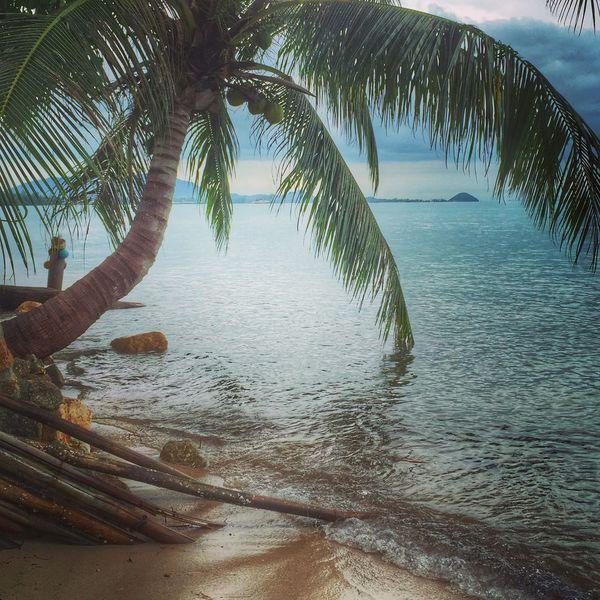 Kosamui Sky LoveBeaches Rainy Day Sand Beach Coconut Sea Thailand Good Afternoon!