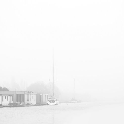 Mist AMPt