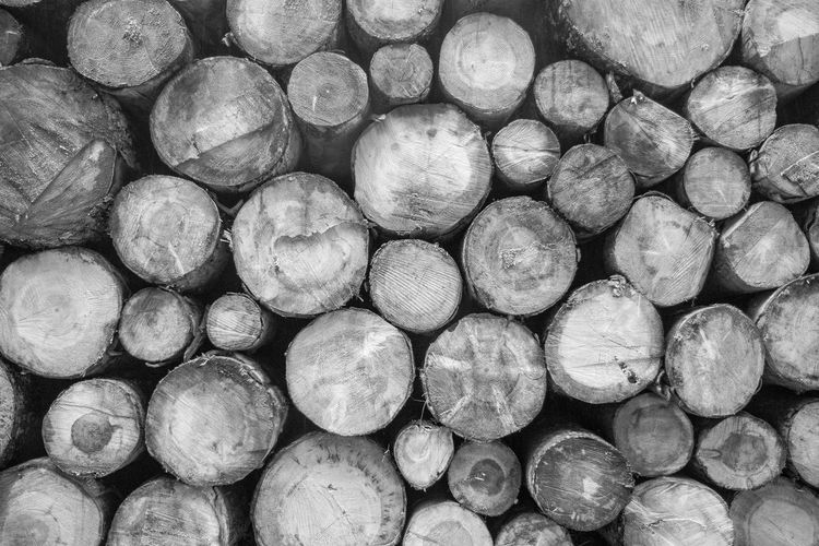 Wood Wood Wall Backgrounds Black And White Wood Blackandwhitewood Day Large Group Of Objects Nature No People Outdoors Woodwall