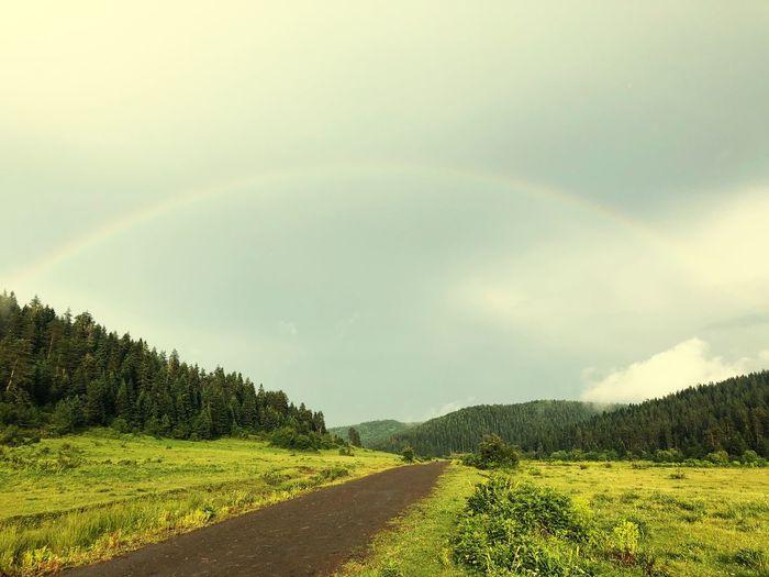 Uluyayla Safranbolu😊✌💕 Karabuk Plant Sky Beauty In Nature Tree Cloud - Sky Landscape Scenics - Nature