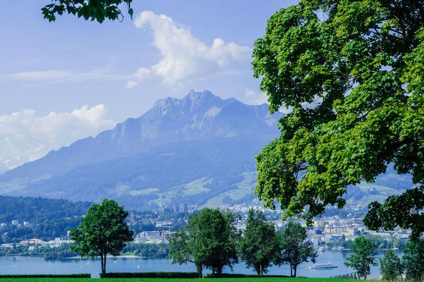 Luzern - Pilatus - Vierwaldstätter See Berge Bäume Himmel Schweiz Wolken Beauty In Nature Day Mountain Nature No People Outdoors Pilatus Scenics Sky Tree Vierwaldstättersee