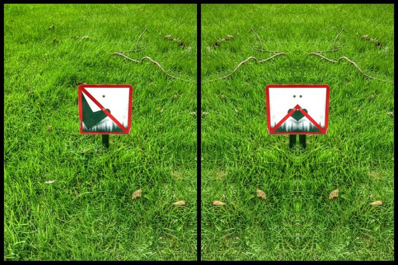 Edit is so fun! Before : I have to forget my little rest on the grass.../ After : you are welcome!!! Edit Against Censorship