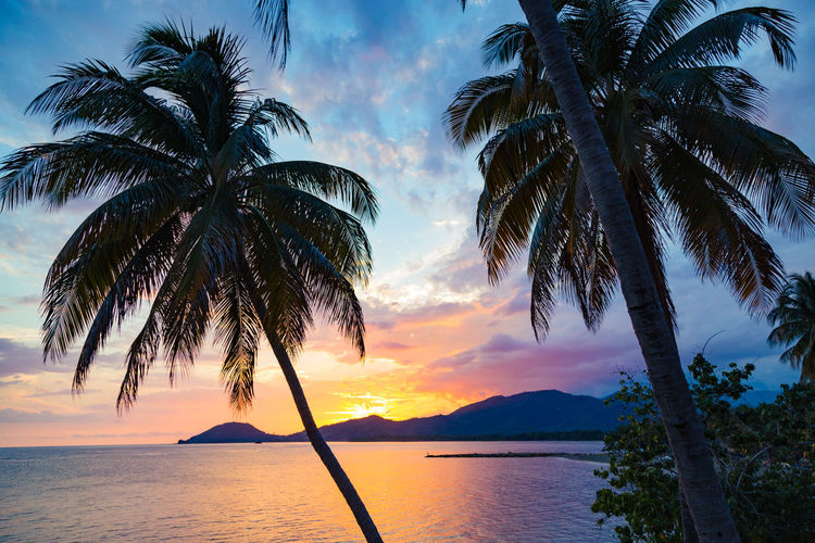Water Sky Sunset Beauty In Nature Tree Tropical Climate Scenics - Nature Palm Tree Tranquility Tranquil Scene Plant Sea Cloud - Sky Nature Idyllic No People Silhouette Horizon Over Water Outdoors Coconut Palm Tree Palm Leaf Tropical Tree Cuba Holiday Sky And Clouds Chivirico Cuba Ocean View