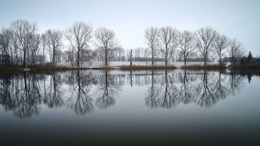 """Water reflection"" Moments Moment Of Silence Wasser Bäume Tree Sadness Winter Water Reflections Reflektion Reflections In The Water Michael Hruschka Https://www.facebook.com/mh.photography.de/ Reflection Water Tranquil Scene Nature Tranquility Beauty In Nature Bare Tree Scenics Lake Outdoors No People Symmetry"
