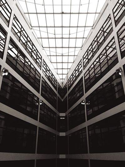 Willybrandthaus Vivianmaier Finding The Next Vivian Maier Gallery Intricate Precise Ordered