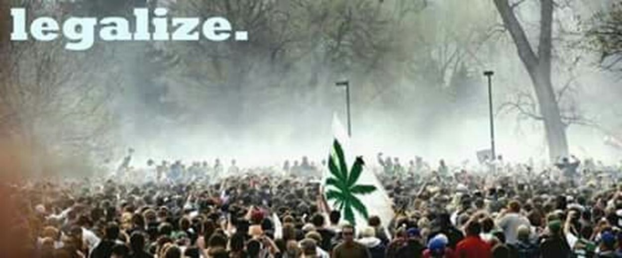Legalizecannabis Medical Marijuana Forbetterworld,forbetterpeople