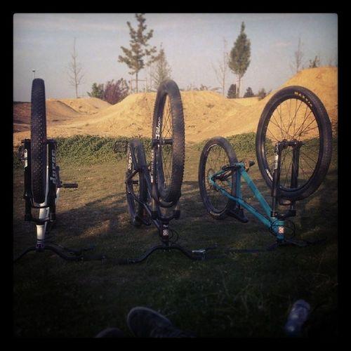 Leafcycles Weiss Schwarz Blau suntourrockshoxnsbikesallachgooddayjustride