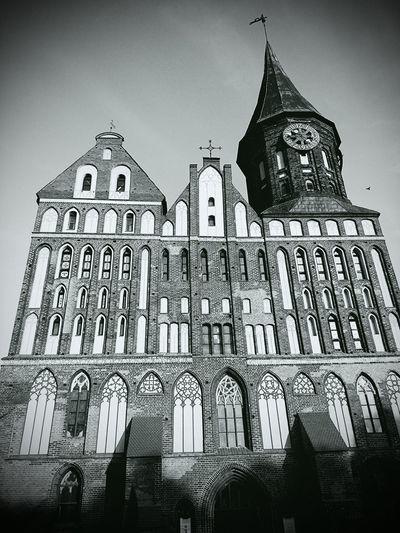 Pastel Power Kaliningrad. Kenigsberg