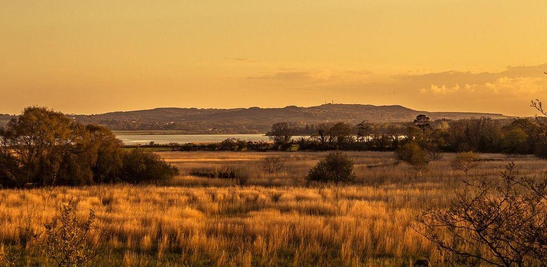 Landscape Landscape_Collection Ireland Sunset Sunset_collection Colour Art Fields Beauty Beatiful