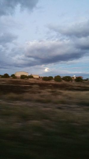 Showing Imperfection Cool Looking Moon Clouds sunsetting and moon rising Trees Moving While Taking Picture Blurry Picture
