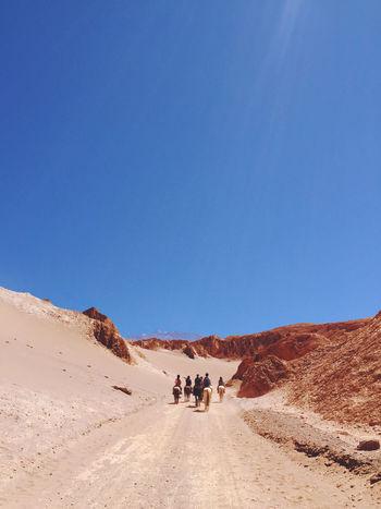Traveler Adventure for Chile Adventure Atacama Atacama Desert Awasi Chile Chili  Desert Desierto De Atacama Laguna Tebenquiche San Pedro De Atacama ,Chile Salar De Atacama San Pedro De Atacama