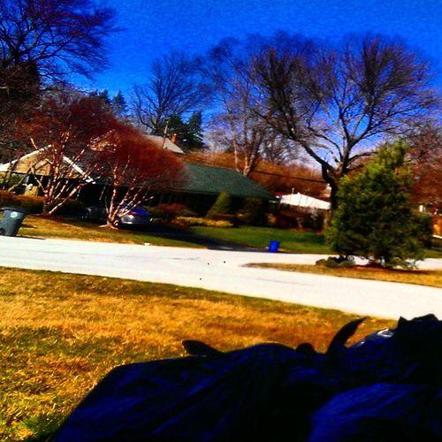 Igerspennsylvania Ig_pennsylvania Igworldclub Environment shadows sunny spring suburbs eastcoast pennsylvania yardwork shangrila peaceful zen wonderland mondayfunday week
