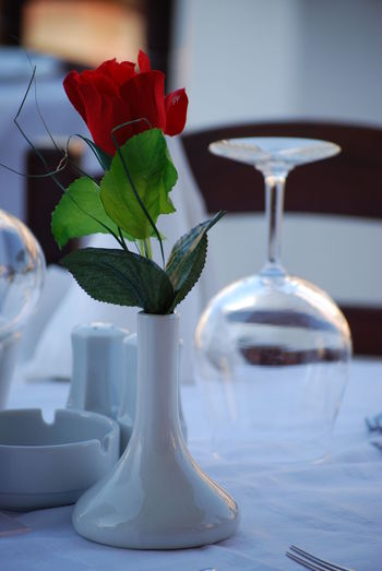 Rose in vase on table at restaurant