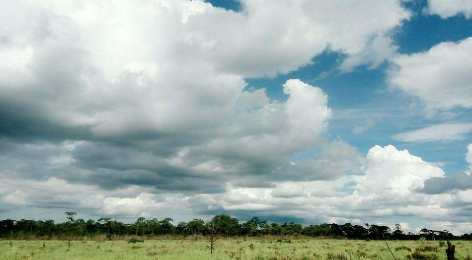 Cloud Sky Wide