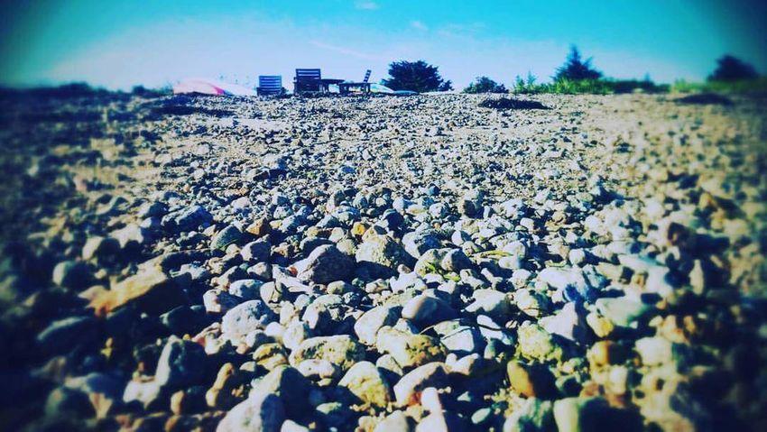 Lowtide  Beach Mattapoisett Myhappyplace🌊🌊🌊🐚