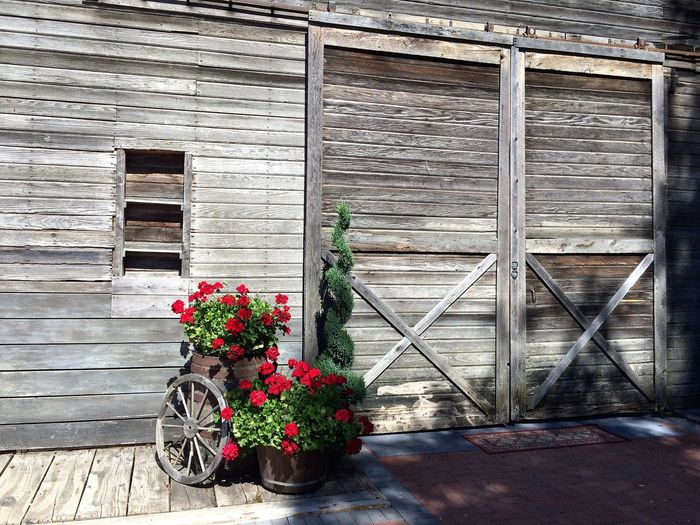 Old Barn Architecture Building Exterior Built Structure Day Flower Growth Nature No People Old Barns Outdoors Plant Potted Plant Red Window Box Wood - Material