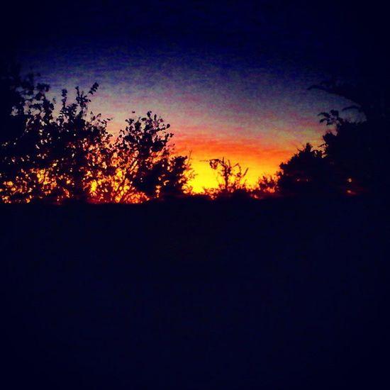 Texas Sunrise Goodmornin yall