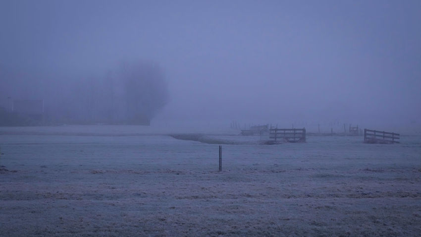 Nautical Vessel Nature Fog Outdoors Cold Temperature Winter Sea Day No People Sky Water Beauty In Nature Maasland Farm