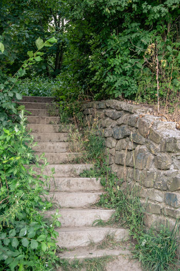 Stairs Stairway Stone Steps Werne A.d. Lippe Architecture Beauty In Nature Built Structure Nature No People Outdoors Solid Stair Staircase stairways Stone - Object Stone Material Stone Stairs
