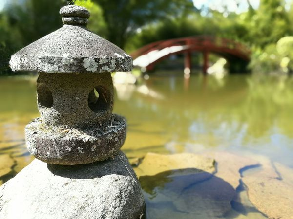 Stone Art Water Costa Rica Day Outdoors Close-up Nature Sky Woods Mobile Photography EyeEmNewHere My Year My View Landscape Journey Lake View Lakeshore Bridge Japanese Garden Mobile Photograpy Art Is Everywhere Scenics The Great Outdoors - 2017 EyeEm Awards The Architect - 2017 EyeEm Awards The Street Photographer - 2017 EyeEm Awards
