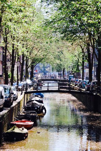 Amsterdamse gracht. . . Amsterdam Canals Amsterdam Canal Amsterdamse Grachten Holland Photography Landscape Canon Canonphotography