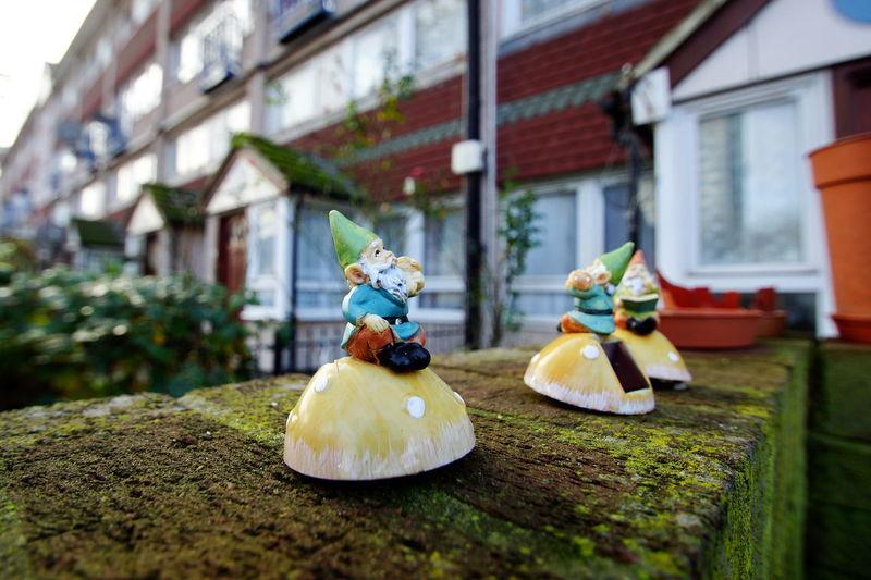 Art And Craft Garden Dwarf Figurine  Selective Focus Garden Dwarf Gnome Midget Outdoors Toy House Building Building Exterior Creativity