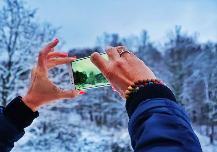 Cropped hands of woman photographing bare trees during winter