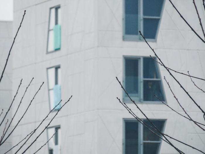 City Apartment Façade Window Close-up Architecture Building Exterior Built Structure My Best Photo