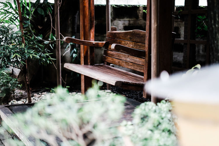 Empty bench against plants