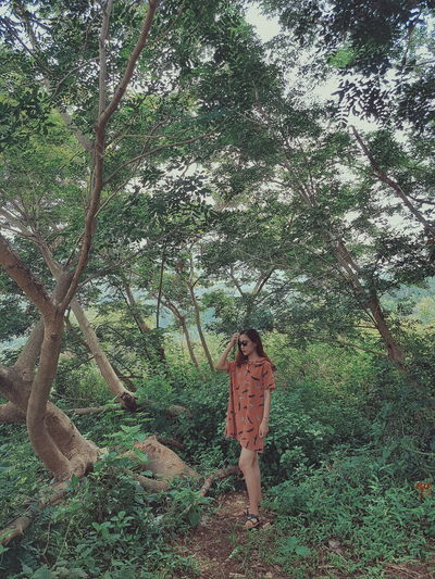Kyduyen Green Color Nature Tree Day Picoftheday Moment In Time Moments Of Life Enjoy Time Lovephotography  Little Girl Likesforlikes Today's Hot Look Nice Pic Nice View Rear View Forever Young Forestwalk Forest Trees Likealways Danang, Vietnam