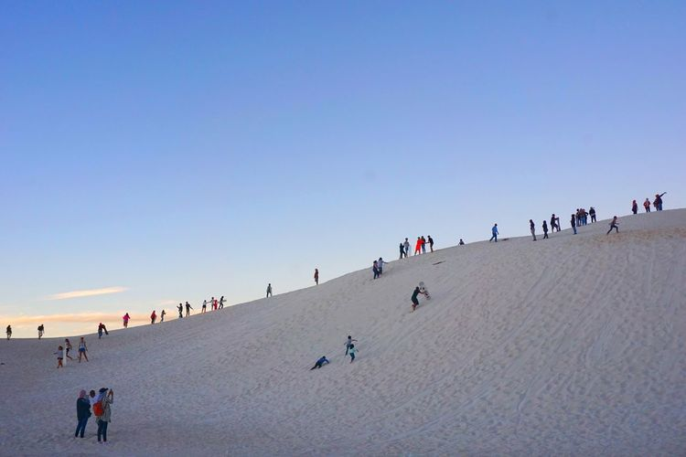 Large Group Of People Sand Outdoors Walking Sand Dune People Animal Themes Sky Day Nature Clear Sky Beauty In Nature Adults Only Adult Crowd Lancelin Dunes Sandboarding Australia Perth The Week On EyeEm The Week Of Eyeem