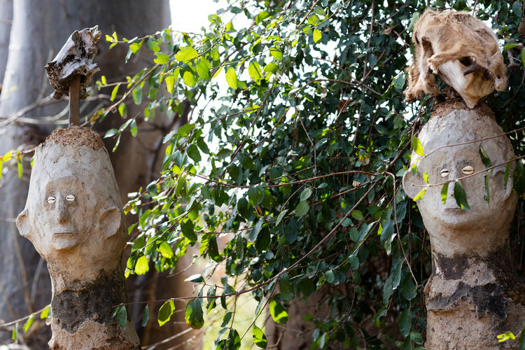Stone busts amidst plants