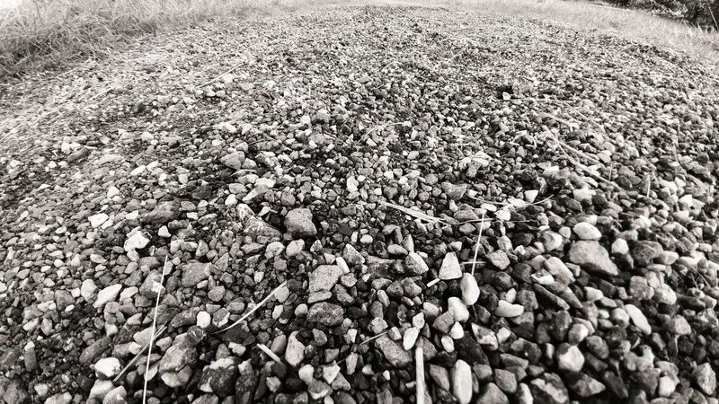 Road Droga Ziemia Earth Trawa Grass Czarnobiałe Black & White Czarno-białe Black And White Kamienie Stones Lg G5 LG  Lgg5photography Smartphonephotography Smartphone Photography Monochrome Photography