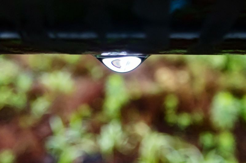 Drop Focus On Foreground Water Day No People Outdoors Nature Close-up Fragility Dripping Tree Freshness