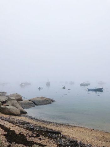 Misty Maine Landscape Fishing Industry Fishing Pier Deer Isle Maine Mist