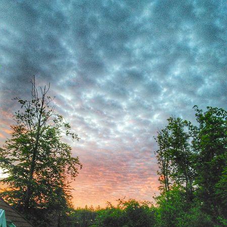 Wenn das mal kein anständiger Cloudporn ist 😊⛅ Landscape Sunset Hunsrück Trees RedSky Germany German Summer