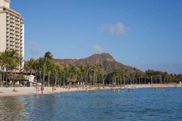 Kuhio Beach with Diamond Head in Background Lets Go To The Beach Bathing Enjoying Leisure Time Crowded Beach Beachstroll Palm Trees Urban Beach City Ocean Sand Jetlag Tourism Destination Tourism Hawaii Honolulu  Vacation Hotel From The Water Level Beachwalk People On Beach Kuhio Beach Diamond Head Fashion Streetwear Bathing Suit  Diamond Head Street Photography