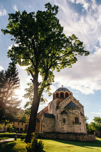 Studenica monastery Tree Plant Architecture Built Structure Building Exterior Cloud - Sky Religion Nature Belief Spirituality History Outdoors Travel Destinations Travel Spring Church Monastery Bizantinstyle Bizantine Curch Srbija Serbia Byzantine Church