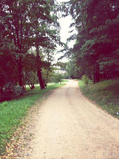 autumn Walking Around